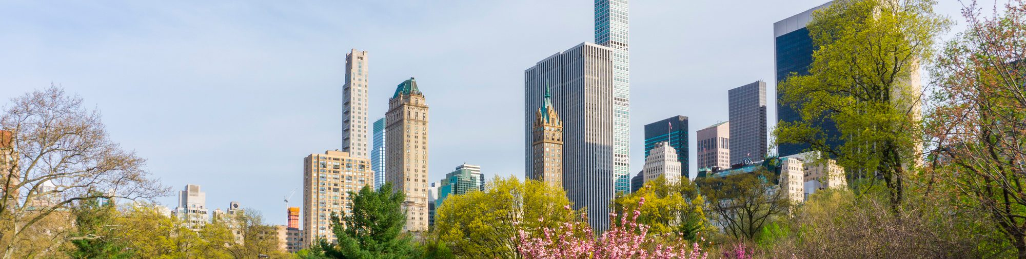 central-park-nyc-sml2
